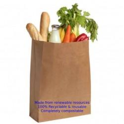 Eco-Friendly Recyclable Kraft Paper Bag #L