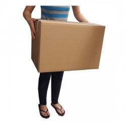 Moving Box #4833